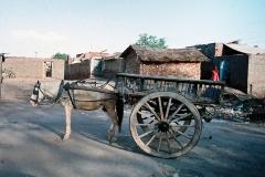 India-151