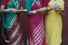 India-259