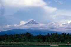 Indonesia 1992.127
