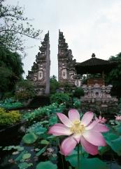 Indonesia 1992.006