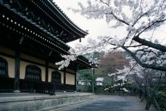 Japan 1993.035