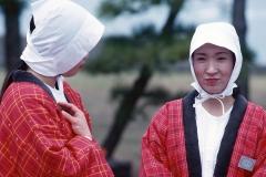 Japan 1993.136