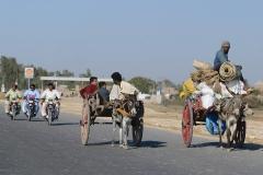 Pakistan.158