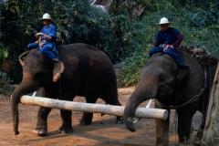 Thailand 2001.010
