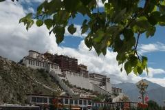 Tibet 2015.017