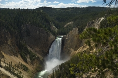 Yellowstone'10-036