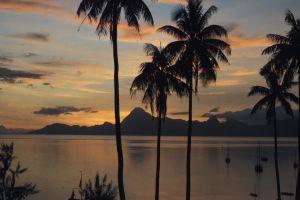 TahitiPrinter.jpg